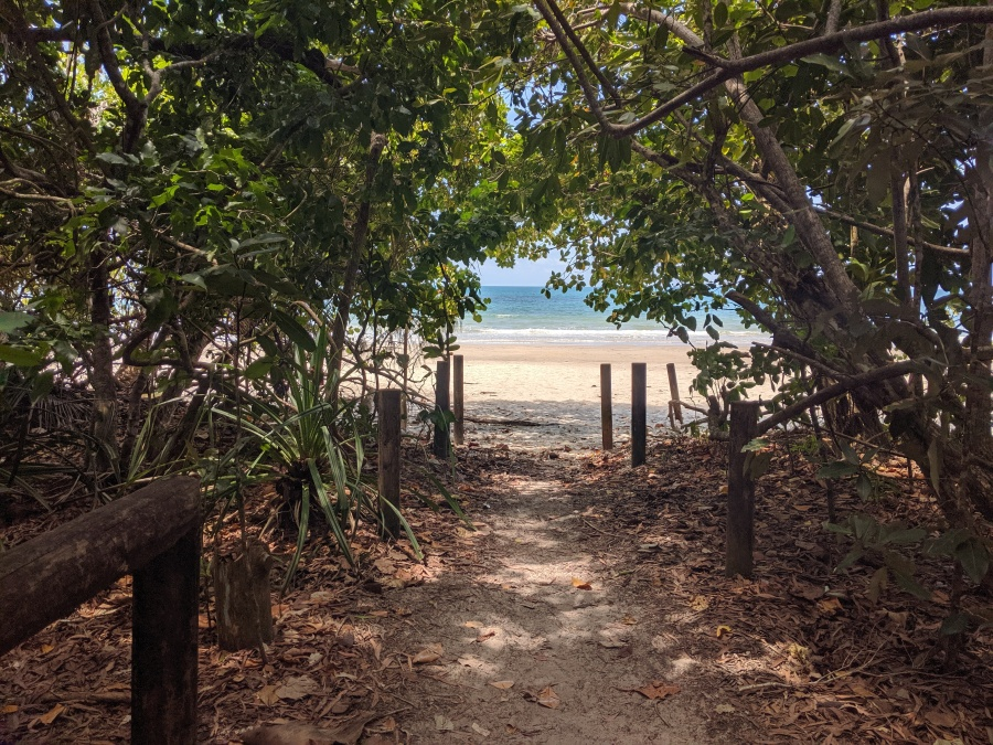 An inviting beach in the Daintree Rainforest