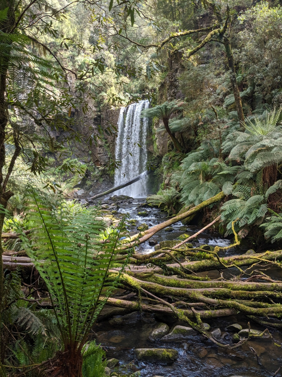 Hopetoun Falls in the Great Otway National Park