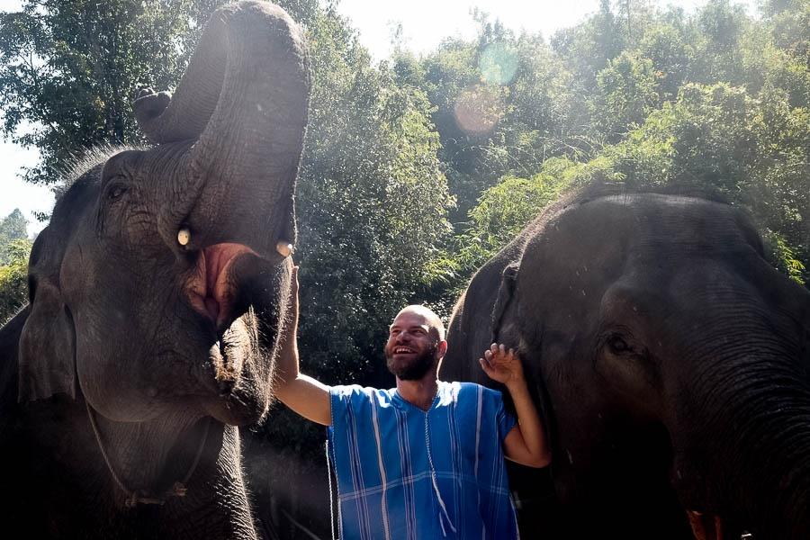 'Elephant Spa' Near Doi Inthanon National Park
