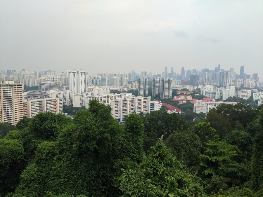 Singapore from Mount Faber
