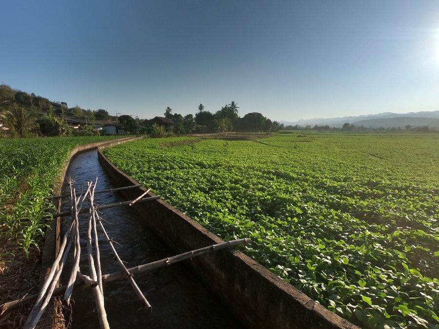 Farmland Near Mae Sariang
