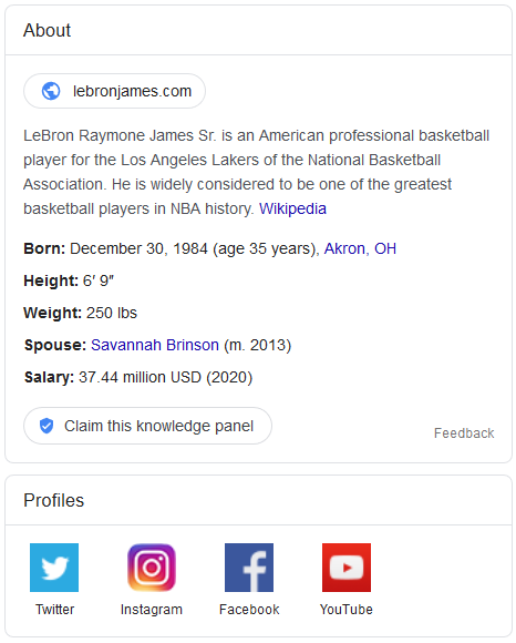 Google's Knowledge Panel for LeBron James